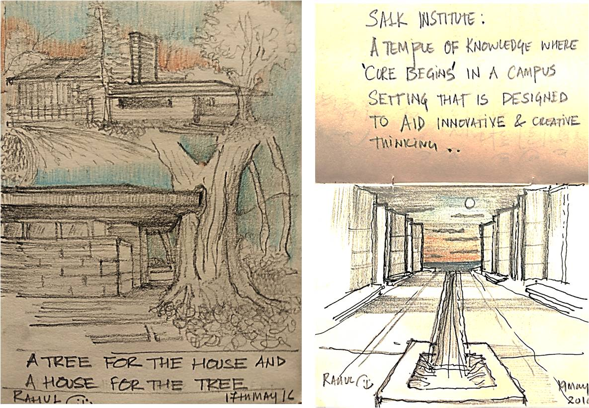 Sketches studying the work of Frank lloyd Wright, Louis Kahn and Mies Van Der Rohe